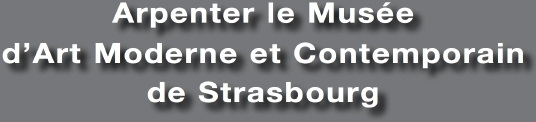 Mus e d 39 art moderne et contemporain de strasbourg le carr d 39 art cole de danse - Musee d art moderne et contemporain de strasbourg ...